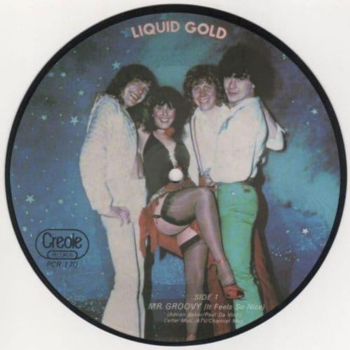 Liquid Gold<br>Mr Groovy (It Feels So Nice)